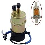 Kraftstoffpumpe Benzinpumpe inkl. Benzin- Filter für Honda CBR NT NTV VFR VT XL XRV Kawasaki Ninja...