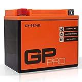 GP-PRO GTX12-BS 12V 10Ah Gel-Batterie (Ähnlich  YTX12-BS/ 51012) (Wartungsfrei / Versiegelt)...