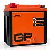 GP-PRO GB9-B 12V 9Ah Gel-Batterie (Ähnlich YB9-B / CB9-B) (Wartungsfrei / Versiegelt) Akkumulator...