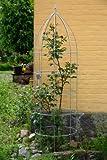 Blumenhilfe Verzinkt Ø 30cm Höhe: 100cm Rankhilfe Rankgitter Obelisk