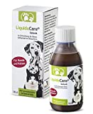 LiquidoCare® Gelenk Hund und Katze | Nahrungsergänzungsmittel bei Arthrose, Rheuma und Arthritis |...