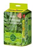 Floragard Aktiv-Grünpflanzen- und Palmenerde 20 L • Spezialerde für Palmen, Farne, Ficus, andere...