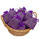 10 Lavendelsäckchen mit 200 g !!!! frischen französischem Lavendel Lavendelblüten der Provence in...