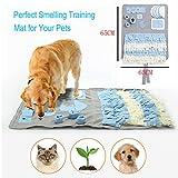 Schnüffelteppich für Hunde, Hund Riechen Trainieren, Geruchsempfindung Trainieren Matte,...