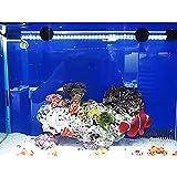 G-Lighting® Aquarium LED Beleuchtung Leuchte Lampe 57 LEDs 4W 48CM Lighting für Fisch Tank, EU...