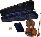 Steinbach 1/16 Geige im SET Ebenholzgarnitur