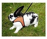 Kerbl Kaninchengeschirr mit flexibler Leine, 120cm