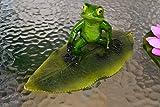 Frosch- hübscher Schwimmfrosch Surfer auf großem Blatt für den Teich - stabile Ausführung-...