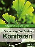 Koniferen - Der immergrüne Garten - Ratgeber Blumen und Garten