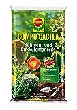 COMPO CACTEA Kakteen- und Sukkulentenerde mit 8 Wochen Dünger für alle Kakteenarten und...