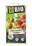 COMPO BIO Obstmaden-Fallen, inkl. Bindedrähte, Mit Lockstoff, Insektizid-frei, 2 Stück