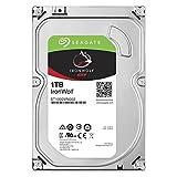 Seagate NAS HDD ironwolf 1TB 1000GB Serial ATA III–Festplatte...