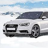 Winterabdeckung Scheibenabdeckung Eisschutz, Parsion Scheibenabdeckung Auto Winter Anti-Frost Auto...