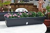 Pflanzkasten,Blumenkasten,Balkonkasten,2er Set!!mit Wasserspeicher;Kunststoff,anthrazit,100cm