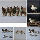 12 Ente Vögel Deko Echte Federn Styropor Floristik Basteln Hobby Naturgetreu AN2