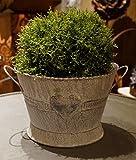 Metall Schale Herz klein mit Griffen Grau Shabby Chic Pflanzkübel Garten Terrasse