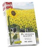 Busch H0 Sonnenblumen 60 Stück