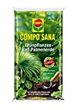 COMPO SANA Grünpflanzen- und Palmenerde mit 8 Wochen Dünger für alle Zimmer- und Balkonpflanzen...