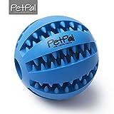 PetPäl Hundeball mit Zahnpflege-Funktion Noppen Hundespielzeug aus Naturkautschuk | RobusterHunde...