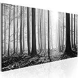 murando - Bilder Wald 135x45 cm Vlies Leinwandbild 1 TLG Kunstdruck modern Wandbilder XXL...