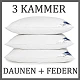 MA17 3 Kammer Kopfkissen Daunenkissen Kissen 800 Gr. Daunen + 800 Gr. Federn 1600 Gr