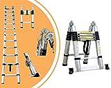 Leogreen - Mehrzweckleiter, Teleskopleiter, 3,8 Meter, Stabilisierungsstange, EN 131,...