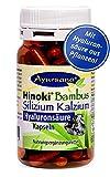 Ayursana - Silizium Kapseln mit veganer Hyaluronsäure und Bambus (120 Stück)