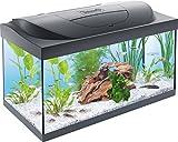 Tetra Starter Line Aquarium-Komplettset mit LED-Beleuchtung stabiles 54 Liter Einsteigerbecken mit...