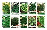 10 Sorten | Kräuter Saatgut Sortiment | über 60000 Kräutersamen | Vorteilspackung | inklusive...