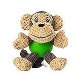 Raffaelo Hundespielzeug Hund Plüschspielzeug | Interaktives Spielzeug für Hunde |...