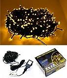 LED Lichterkette für Innen & Außen - 200 LED Warmweiss - grünes Kabel - 10m Zuleitung - Trafo...