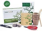 Bonsai Samen Set – Züchten Sie Ihren eigenen Bonsaibaum mit Hilfe von Samen – Das Geschenkset...