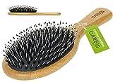 Haarbürste mit Wildschweinborsten ✮ Haarbürste aus natürlichem Bambus-Holz für Frauen, Männer...