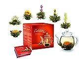 Creano Teeblumen Mix - Geschenkset'ErblühTee' Frühjahrslese mit Glaskanne Weißtee (in 6 Sorten)