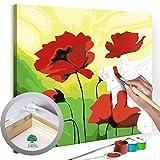 murando - Malen nach Zahlen 2.0 – Bilder Rote Mohnblumen 45x45 cm – Malset mit Holzspannrahmen -...