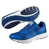 Puma Herren Essential Runner Outdoor Fitnessschuhe, Blau (Lapis Blue-Blue Depths-Nrgy Turquoise), 44...