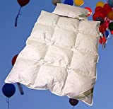 Betten Hofmann Baby Kinder Daunenbett Ganzjahresdecke Daunendecke Set 100x135 cm mit Kopfkissen...