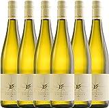 6er Paket - Tagtraum 2016 - Ellermann-Spiegel | halbtrockener Weißwein | deutscher Sommerwein aus...