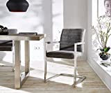 Küchenstuhl Earnest Vintage Freischwinger Design Stuhl (Grau, Gestell Edelstahl)