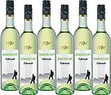 Feinkost Käfer Grüner Veltliner QbA Österreich Weißwein trocken (6 x 0.75 l)