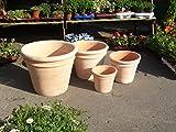 Blumentopf echt Terrakotta 39 cm , Blumenkübel für Garten und Wohnung Terracotta ........... kein...