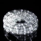 Salcar - Wasserdicht 10m LED Lichterschlauch IP44 Schwimmbäder LED Lichterkette 3 x Legierungsdraht...