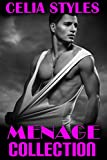 MENAGE BUNDLE COLLECTION - 11 Hot Threesome Short Stories: MMF Romance (MMF, Menage, BBW, Gay,...