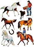 8 tlg. Set _ Fensterbilder - ' Pferde & Reiter ' - Sticker Fenstersticker Aufkleber - statisch...