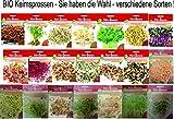 Bio Keimsprossen vers Sorten Alfalfa Radies Brokkoli Weizen Rauke Linsen Zwiebel (Wellness Mischung)