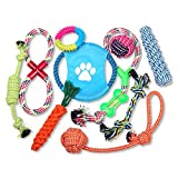 Schramm 10er Set Hunde Spielzeug aus Seil Kauspielzeug Dog Hund Kauspielzeug Baumwollknoten...