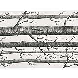 SOLEDI Vliesstoff Stoff Birke Wald Baum mit Tapete Wall Paper Muster Schwarz und Weiß,...