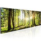 murando - Bilder Wald 135x45 cm - Leinwandbilder - Fertig Aufgespannt - Vlies Leinwand - 1 Teilig -...