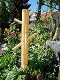 Kakei Gata Wasserspiel Bambus