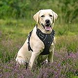 Rabbitgoo No-Pull Hundegeschirr einstellbar weich Hundegeschirr Haustier einfach sicher Kontrolle...